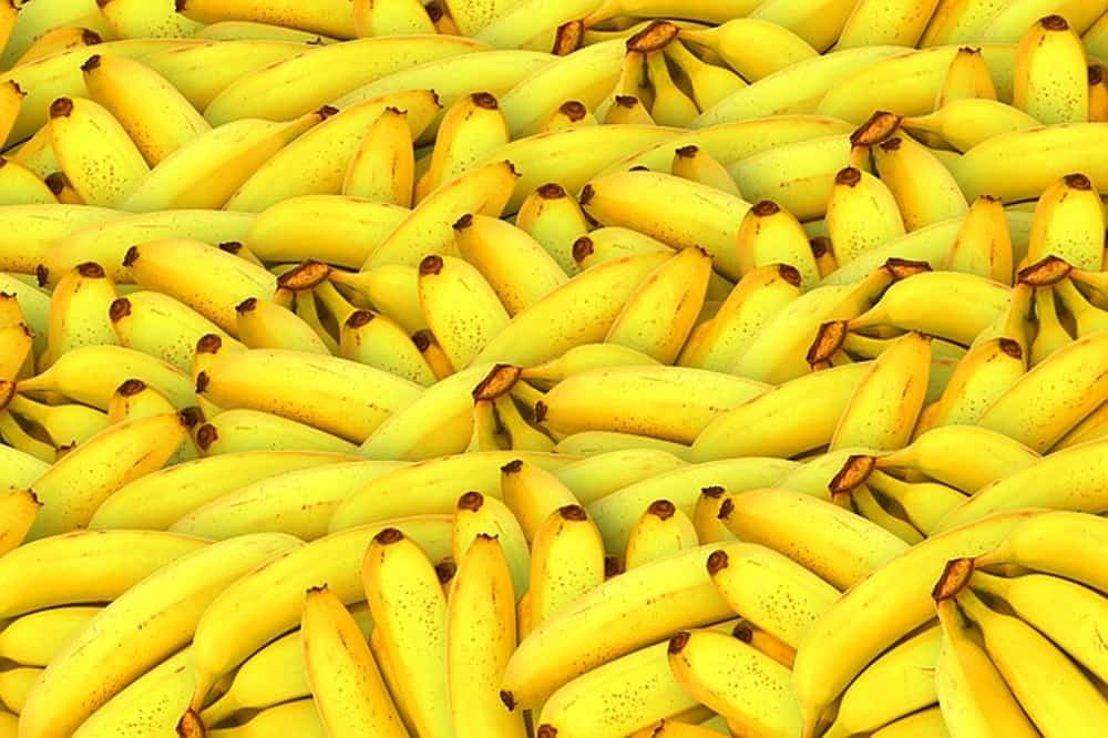 how long do bananas last