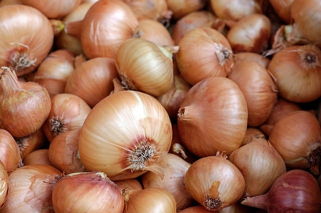 How long does onion last?