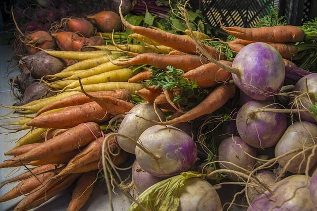 examples of root vegetables