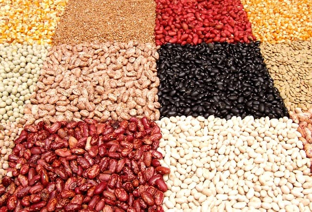 Types of beans and their shelf life