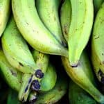 what are plantains?